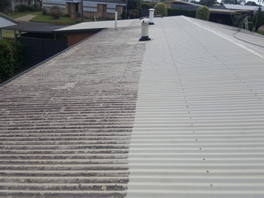 roof cleaning before and after example